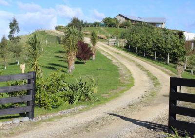 Gallin Farmstay