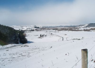 Winter 2011 at Gallin Farm