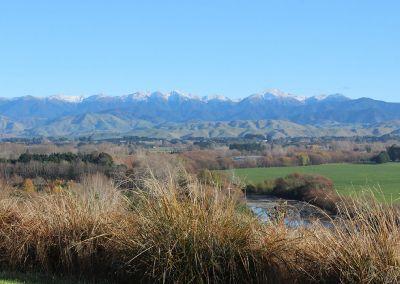 Tararuas view