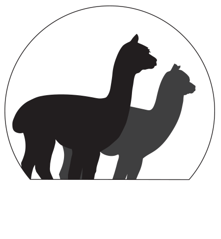 Gallin Farm Alpacas and Farmstay